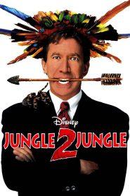Z dżungli do dżungli