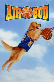Koszykarz Buddy