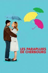 Parasolki z Cherbourga