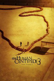 Ludzka stonoga 3